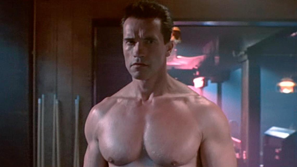 Arnold Schwarzenegger and Linda Hamilton back for a new ...